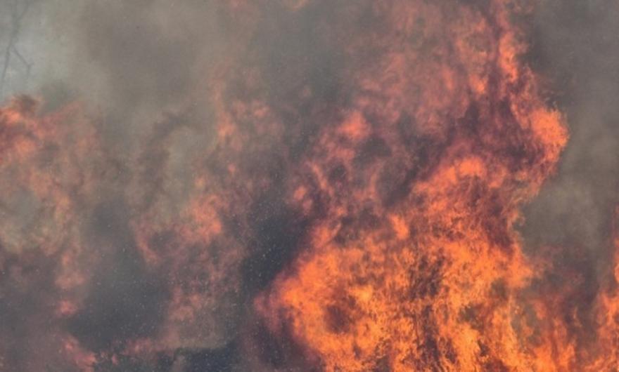 Αμαλιάδα: Σε εξέλιξη φωτιά στην περιοχή Άγναντα της Ηλείας